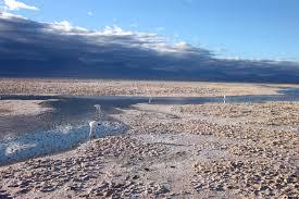 Bildergebnis für lithium abbau indigene